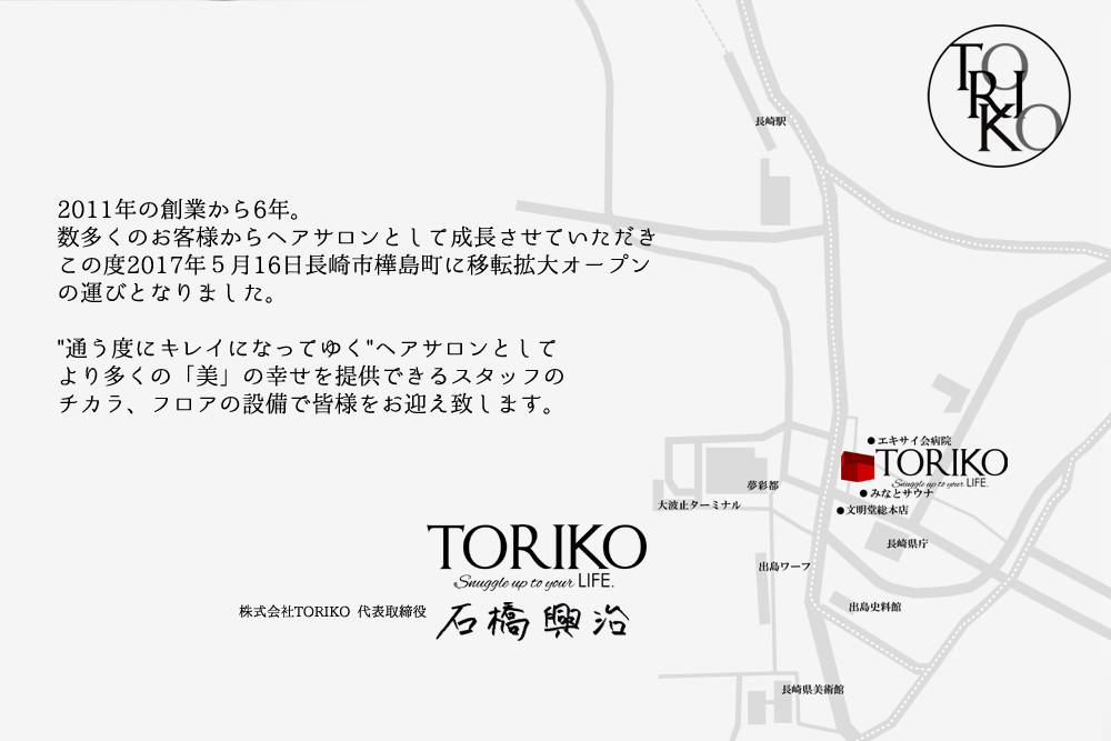TORIKO Concept Image